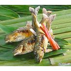 鮎の越後屋特製,こくがあり風味豊かにからっとした炭火焼き【10尾】